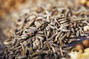best fennel seed substitutes