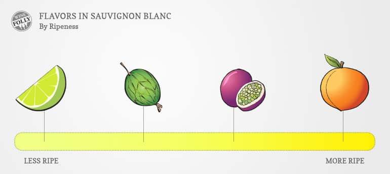 sauvignon blanc flavor profile