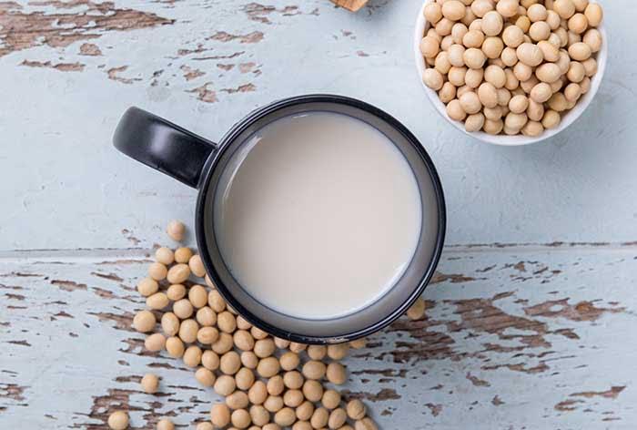 best soy milk maker reviews