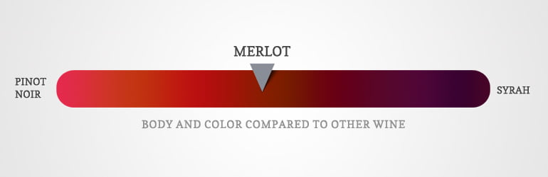 merlot wine comparison to other red wine body diagram